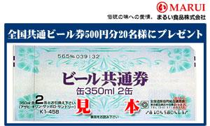 全国共通ビール券500円分